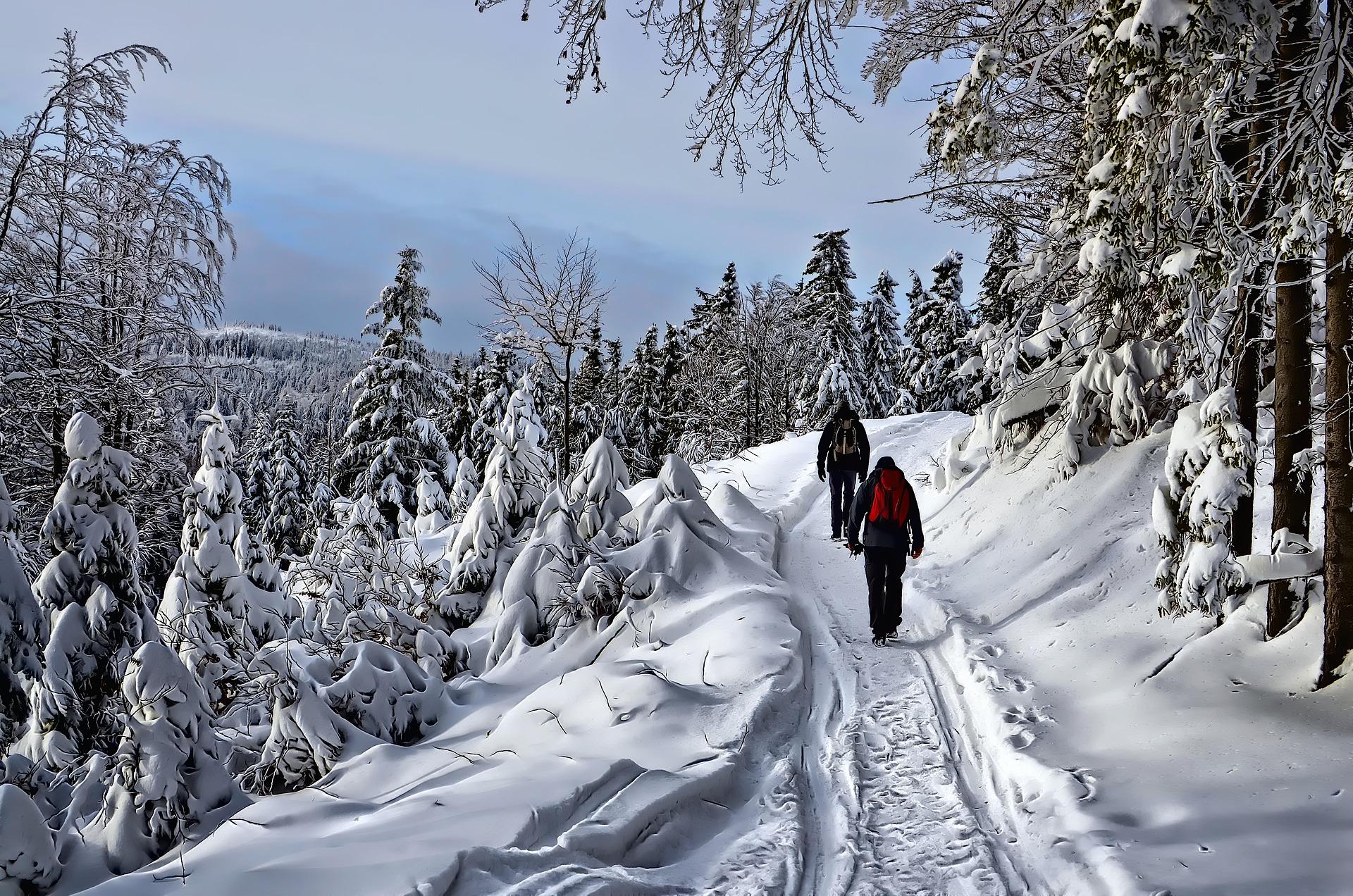 Liczba turystów w Polsce w lutym spadła o 73,0 proc. rdr