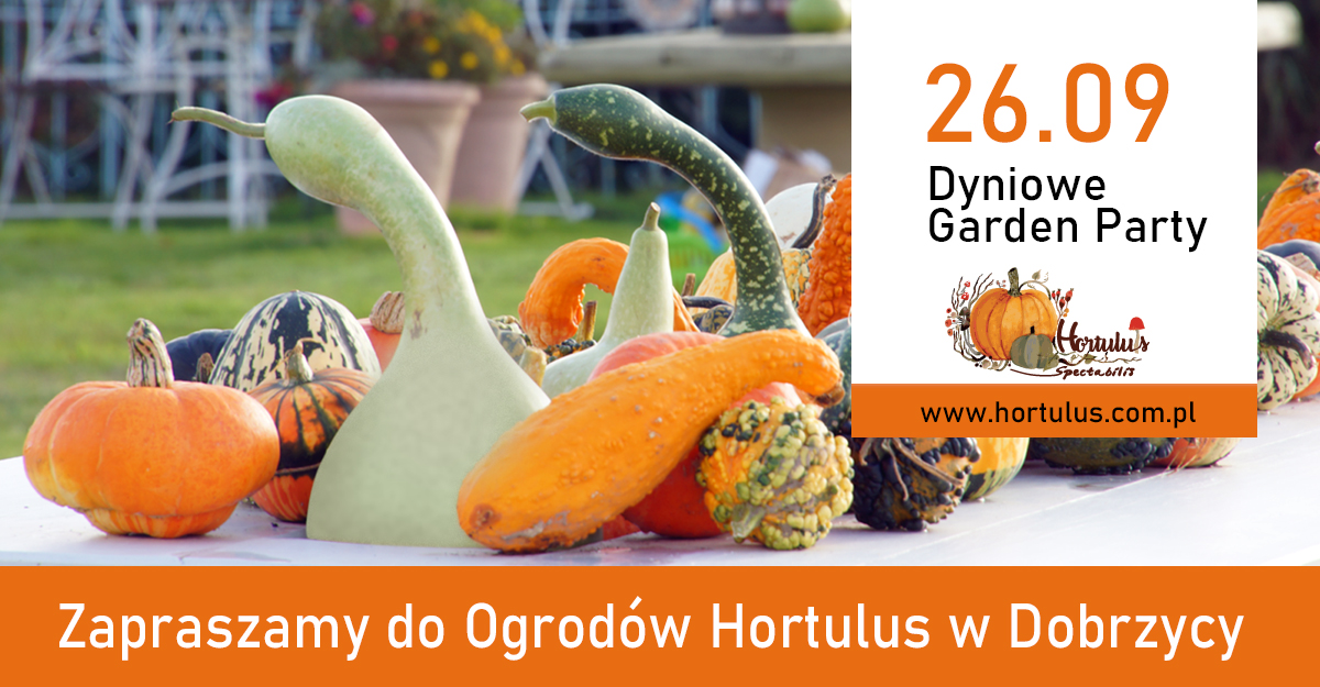 Dyniowe Garden Party